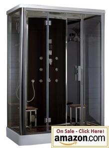 Atlasinternational DZ956F8 Blk Ariel Platinum Steam Shower