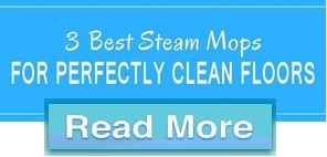 Best Steam Mops Button