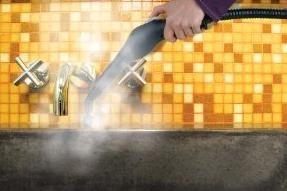 Steamfast Steam Cleaner