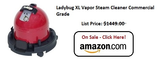 LadyBug XL Steam Cleaner